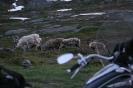 Kelionė į Norvegiją_18