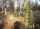 Lapino kelionė į Norvegiją 2009_7